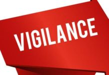 certified vigilance and investigation expert